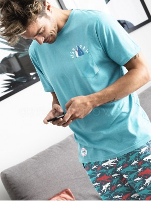 Pijama corto hombre Admas Sharks algodón turquesa